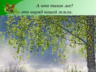 А что такое лес? Лес — это наряд нашей земли.