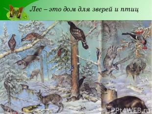 Лес – это дом для зверей и птиц