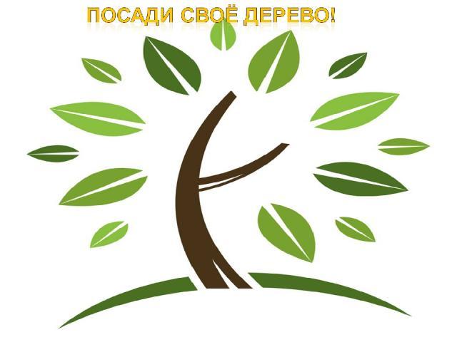 Человек должен быть мудрым и жить в добром содружестве с природой. Каждый может стать другом природе.
