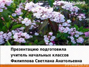 Презентацию подготовила учитель начальных классов Филиппова Светлана Анатольевна