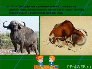 7,5 тыс. лет назад человек одомашнил буйвола— сильного и опасного зверя. Теперь