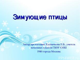 Зимующие птицы Автор презентации: Калмычкова Е.В., учитель начальных классов ГБО