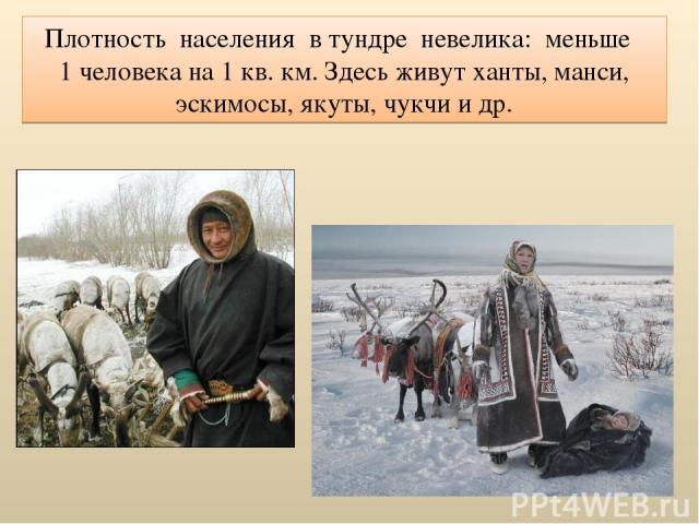 Плотность населения в тундре невелика: меньше 1 человека на 1 кв. км. Здесь живут ханты, манси, эскимосы, якуты, чукчи и др.