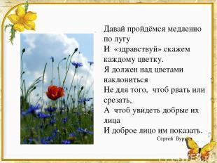 Давай пройдёмся медленно по лугу И «здравствуй» скажем каждому цветку. Я должен