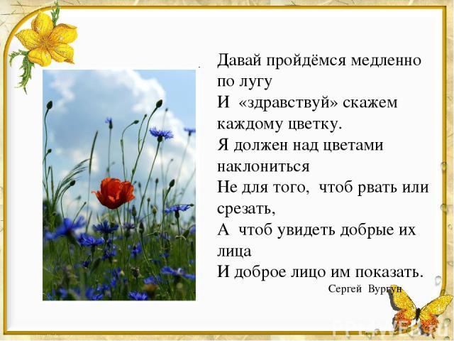 Давай пройдёмся медленно по лугу И «здравствуй» скажем каждому цветку. Я должен над цветами наклониться Не для того, чтоб рвать или срезать, А чтоб увидеть добрые их лица И доброе лицо им показать. Сергей Вургун
