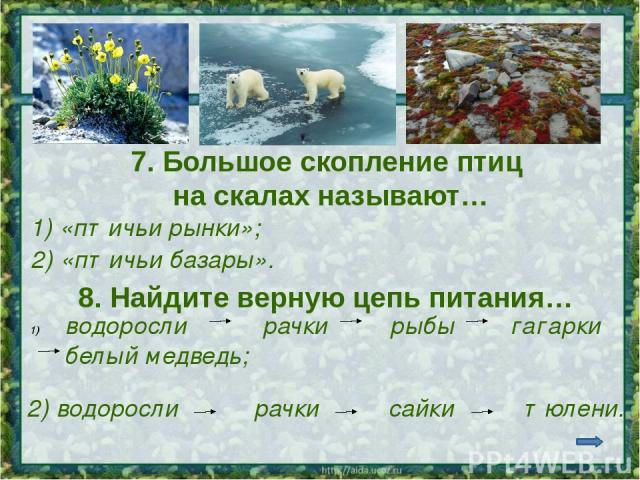 Интернет - источники http://i.treehugger.com/images/2007/10/24/1224ArcticTalePolarBears468-thumb.jpg белые медведи http://img-novosib.fotki.yandex.ru/get/10/kirsan71.4/0_5aa1_c6cc5400_XL Арктика http://www.mirtravel.com/files/photos/picture_preview_…