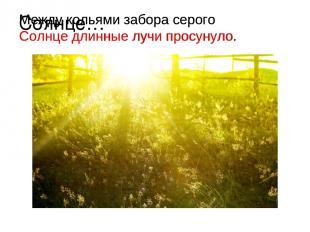 Солнце… Между кольями забора серого Солнце длинные лучи просунуло. Между кольями