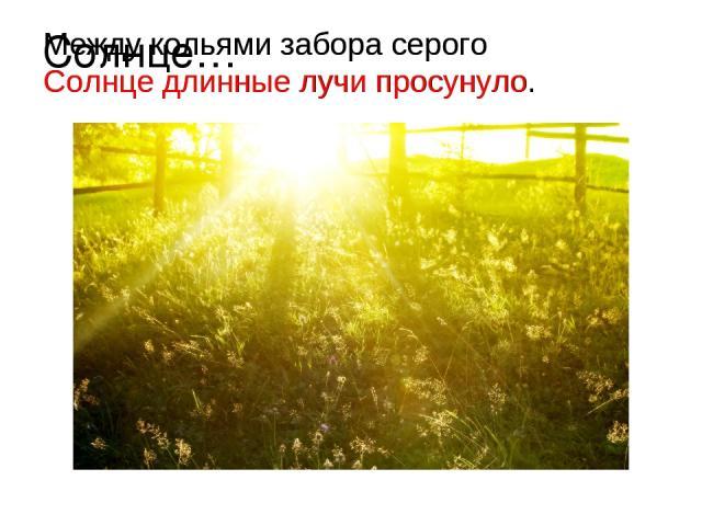 Солнце… Между кольями забора серого Солнце длинные лучи просунуло. Между кольями забора серого Солнце длинные лучи просунуло.