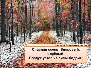Славная осень! Здоровый, ядрёный Воздух усталые силы бодрит; Николай Алексеевич