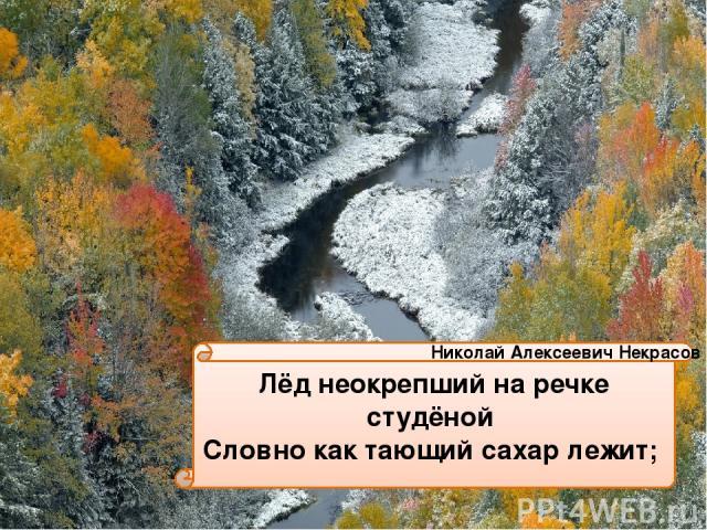Лёд неокрепший на речке студёной Словно как тающий сахар лежит; Николай Алексеевич Некрасов