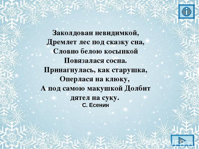 Константин Александрович Вещилов «Зимний пейзаж с елями»