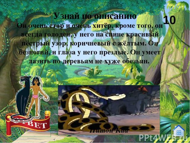 Единственный зверь другой природы, которого допускают на Совет Стаи Волков. Старик, который может бродить, где ему вздумается, потому что он ест одни только орехи, мед и коренья, и который обучает волчат Закону Джунглей. Узнай по описанию Медведь Балу 20