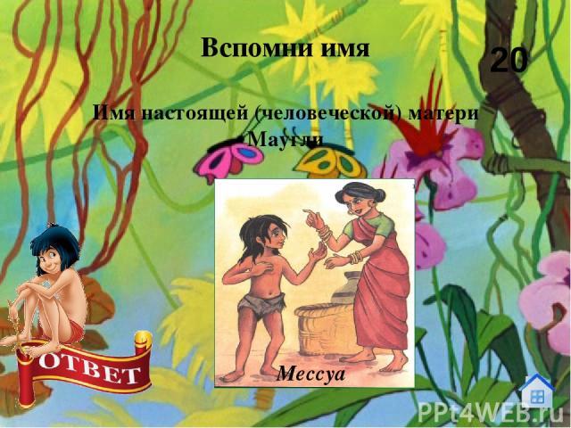 Кто дал человеческому детёнышу имя Маугли? Вспомни имя 30 Ракша
