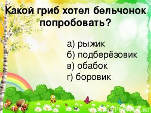 Какой гриб хотел бельчонок попробовать? а) рыжик б) подберёзовик в) обабок г) бо
