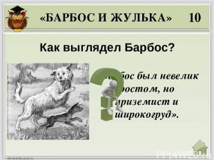 40 Что сделал Барбос, когда увидел бешеную собаку? «БАРБОС И ЖУЛЬКА» «…он только