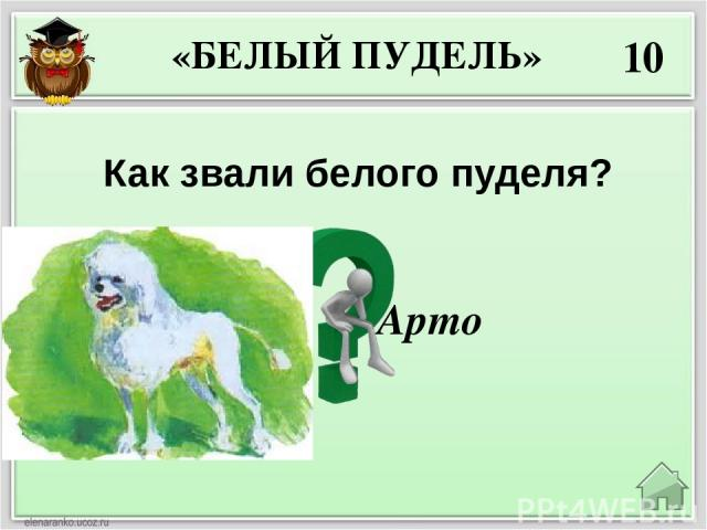 40 Собаку Арто хозяева дачи «Дружба»: а) Купили б) Украли в) Дед им её подарил Украли «БЕЛЫЙ ПУДЕЛЬ»