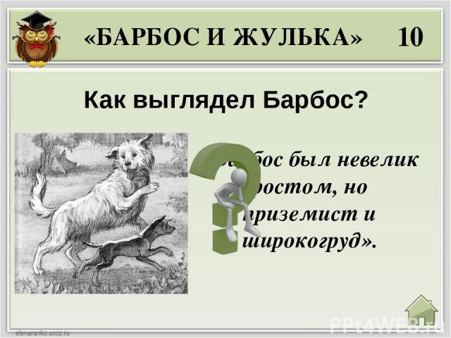 40 Что сделал Барбос, когда увидел бешеную собаку? «БАРБОС И ЖУЛЬКА» «…он только дрожал всем телом и жалобно повизгивал».