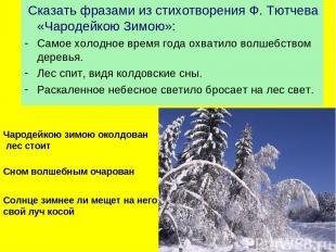 Сказать фразами из стихотворения Ф. Тютчева «Чародейкою Зимою»: Самое холодное в