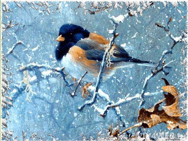 Разве можно забывать: Улететь могли, А остались зимовать Заодно с людьми. Приучите птиц в мороз К своему окну, Чтоб без песен не пришлось Нам встречать весну.