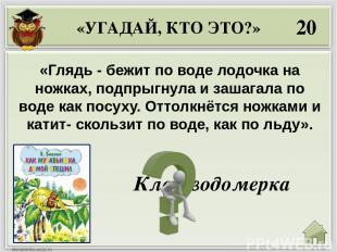 50 «Один крошечный Жучок идёт себе по земле и никуда не прячется. Догнал его Щен