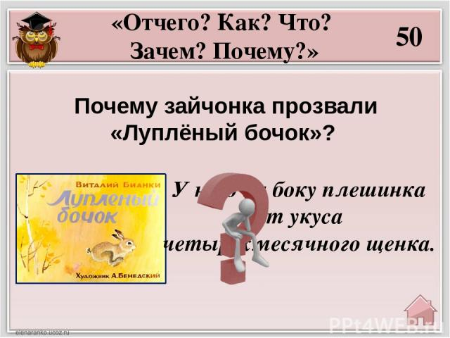 30 Какая загадка есть в тексте сказки «Мастера без топора»? «А знаешь ли ты?» «Без рук, без топорёнка построена избёнка».