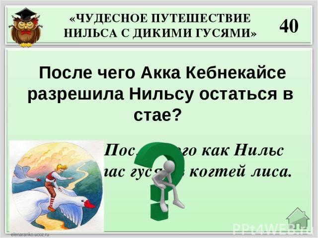 20 Почему морской царь затопил город Винетту? Жители города убивали моряков, морских животных и птиц, топили корабли, чтобы никто в мире не знал, где находится богатый город Винетта.