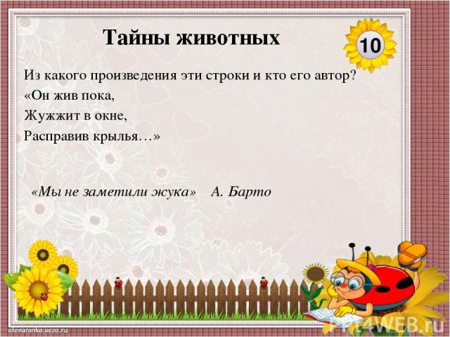 «Мой щенок» С. Михалков Узнай произведение по ключевым словам. Кто автор? Щенок, одеяло, жбан с мёдом, клей, украли, заблудился, ждать, страшный зверь, пчелиный рой, лечить. 40 Тайны животных