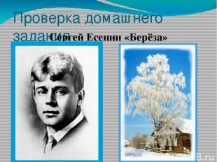 Проверка домашнего задания Сергей Есенин «Берёза»