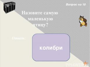 Вопрос на 40 Ответ: «Лев и собачка» Л. Н. Толстой Назови произведение и автора.