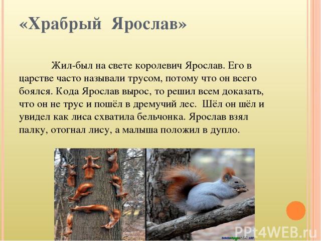 «Храбрый Ярослав» Жил-был на свете королевич Ярослав. Его в царстве часто называли трусом, потому что он всего боялся. Кода Ярослав вырос, то решил всем доказать, что он не трус и пошёл в дремучий лес. Шёл он шёл и увидел как лиса схватила бельчонка…