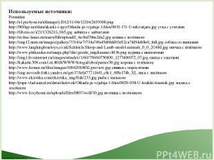 Используемые источники: Ромашки http://s1.pic4you.ru/allimage/y2012/11-06/12216/