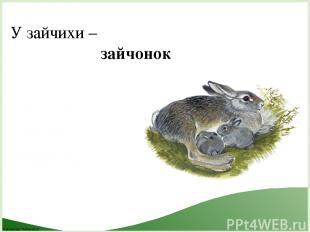 У зайчихи – зайчонок FokinaLida.75@mail.ru