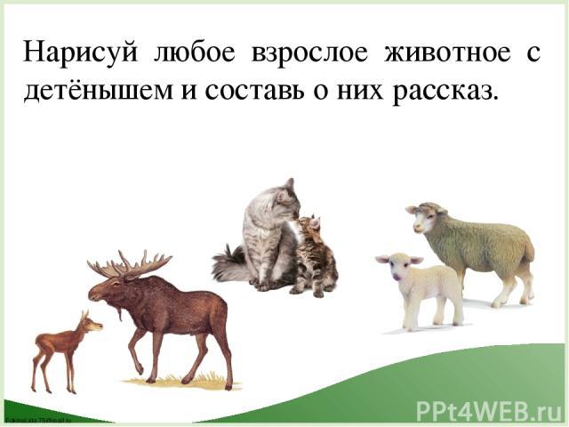 Нарисуй любое взрослое животное с детёнышем и составь о них рассказ. FokinaLida.75@mail.ru