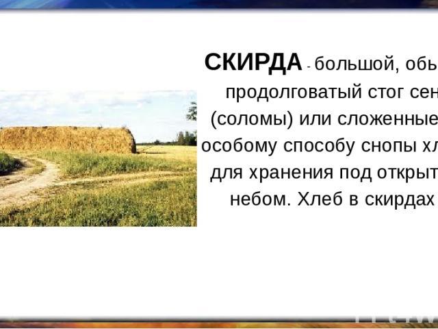 СКИРДА - большой, обычно продолговатый стог сена (соломы) или сложенные по особому способу снопы хлеба для хранения под открытым небом. Хлеб в скирдах.