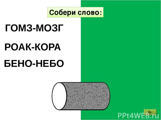 БЕНО-НЕБО РОАК-КОРА ГОМЗ-МОЗГ Собери слово: http://mykids.ucoz.ru/
