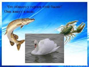 - Что общего у героев этой басни? Они живут в воде. FokinaLida.75@mail.ru