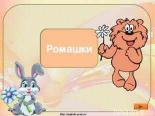 Какие цветы расцвели, пока Заяц шёл к Медвежонку? Ромашки http://mykids.ucoz.ru/