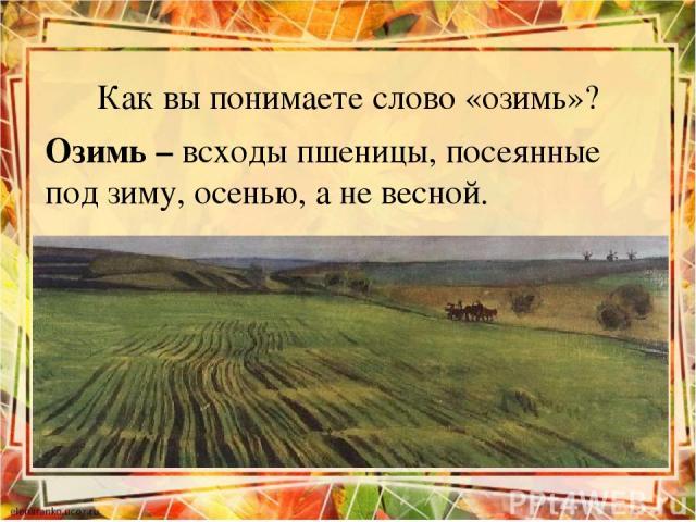 Как вы понимаете слово «озимь»? Озимь – всходы пшеницы, посеянные под зиму, осенью, а не весной.