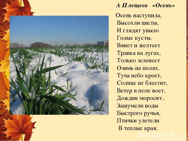 А Плещеев «Осень»  Осень наступила, Высохли цветы, И глядят уныло Голые кусты. Вянет и желтеет Травка на лугах, Только зеленеет Озимь на полях.  Туча небо кроет,  Солнце не блестит, Ветер в поле воет, Дождик моросит…
