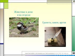 Грамота, книги, время Животные в доме и на огороде Лазарева Лидия Андреевна, учи
