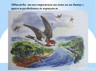 Однажды мама-стрижиха вылетела на битву с врагом-разбойником коршуном.