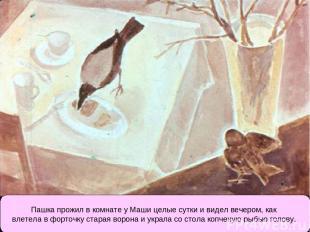 Пашка прожил в комнате у Маши целые сутки и видел вечером, как влетела в форточк