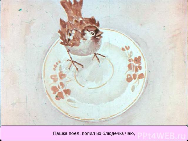 Пашка поел, попил из блюдечка чаю,
