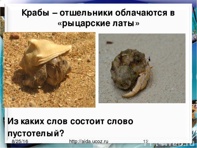 Крабы – отшельники облачаются в «рыцарские латы» http://aida.ucoz.ru Из каких слов состоит слово пустотелый?