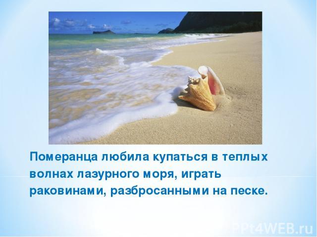 Померанца любила купаться в теплых волнах лазурного моря, играть раковинами, разбросанными на песке.
