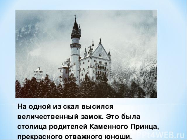На одной из скал высился величественный замок. Это была столица родителей Каменного Принца, прекрасного отважного юноши.