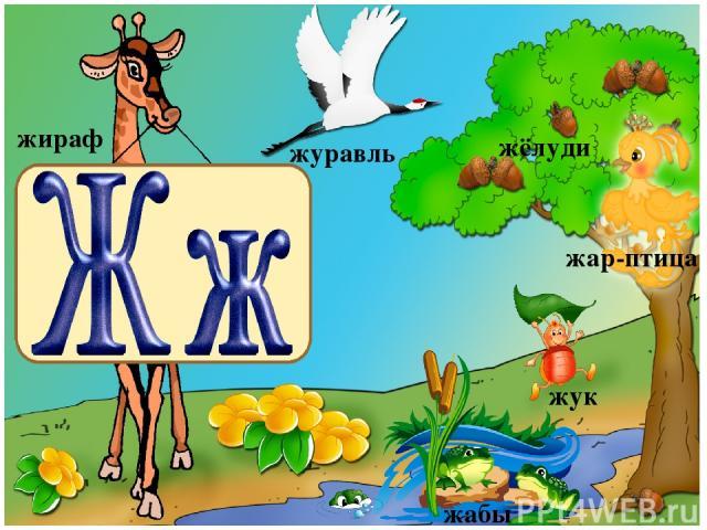 жираф жук жёлуди жабы журавль жар-птица