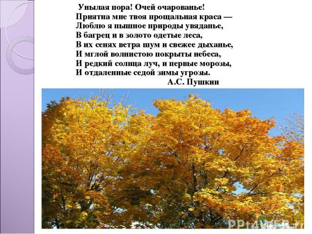 Унылая пора! Очей очарованье! Приятна мне твоя прощальная краса — Люблю я пышное природы увяданье, В багрец и в золото одетые леса, В их сенях ветра шум и свежее дыханье, И мглой волнистою покрыты небеса, И редкий солнца луч, и первые морозы, И отда…