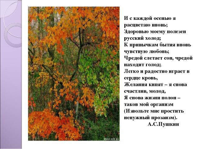 И с каждой осенью я расцветаю вновь; Здоровью моему полезен русский холод; К привычкам бытия вновь чувствую любовь; Чредой слетает сон, чредой находит голод; Легко и радостно играет в сердце кровь, Желания кипят – я снова счастлив, молод, Я снова жи…