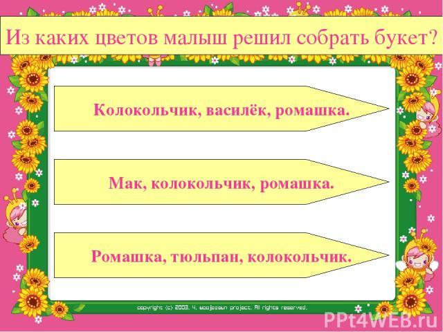 Из каких цветов малыш решил собрать букет? Мак, колокольчик, ромашка. Ромашка, тюльпан, колокольчик. Колокольчик, василёк, ромашка.